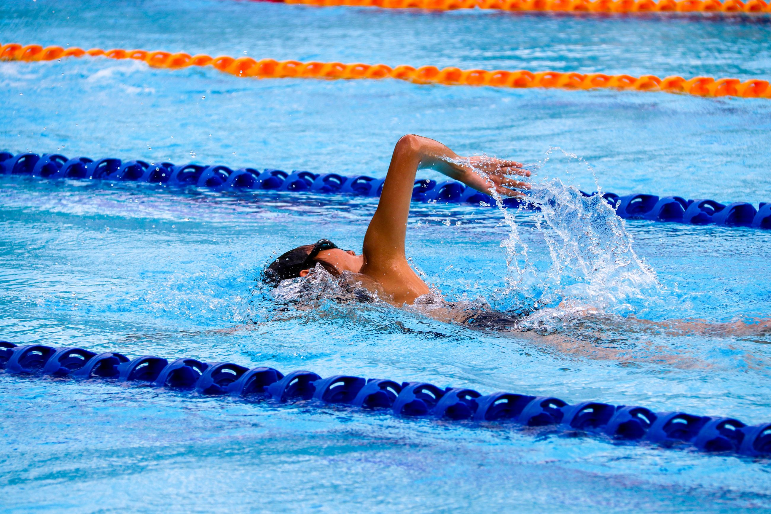 Image of a swimmer in a swimming lap lane between orange and blue string buoys.